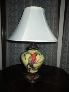 My new parrot lamp